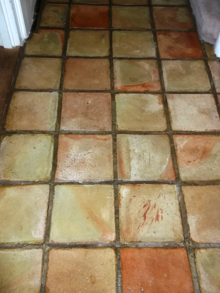 pamment tiles after cleaning